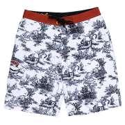 Пляжные шорты Analog 1057195