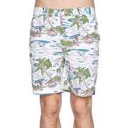 Пляжные шорты Globe 1040935