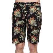 Пляжные шорты Altamont 1062588