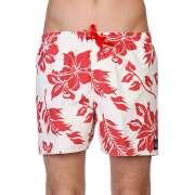 Пляжные шорты Quiksilver 1086475