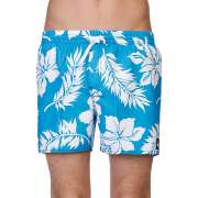 Пляжные шорты Quiksilver 1086477
