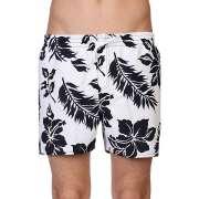 Пляжные шорты Quiksilver 1086476