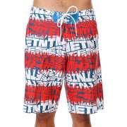Пляжные шорты Etnies 1095304